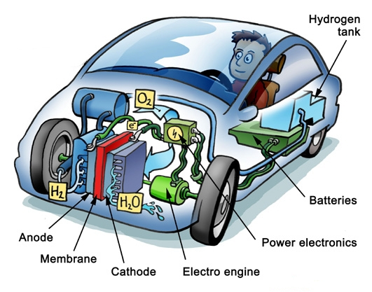 Hydrogen Fuel Cell Cars in Detail
